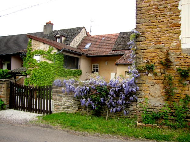 Balleure home with wisteria in bloom.