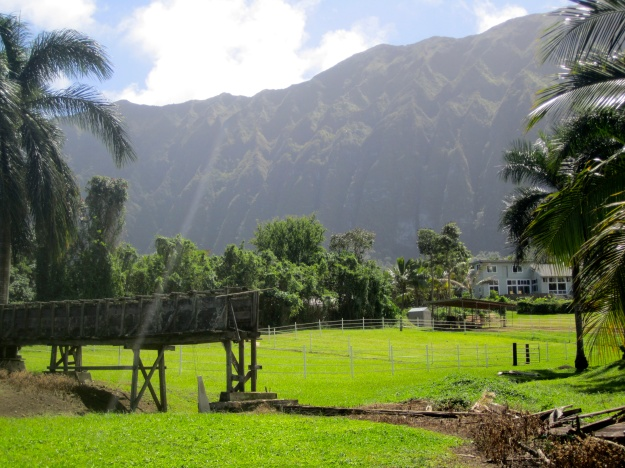 The farm snuggles up against the base of the Ko'olau mountain range.