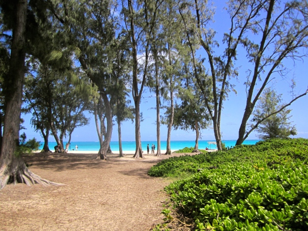 Entry path to Waimanalo Beach.