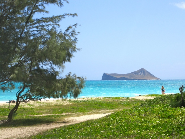 Rabbit Island off Waimanalo Beach.