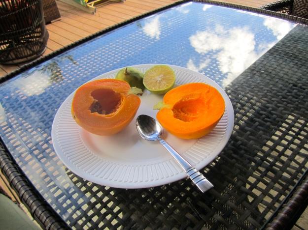 Breakfast on the deck.