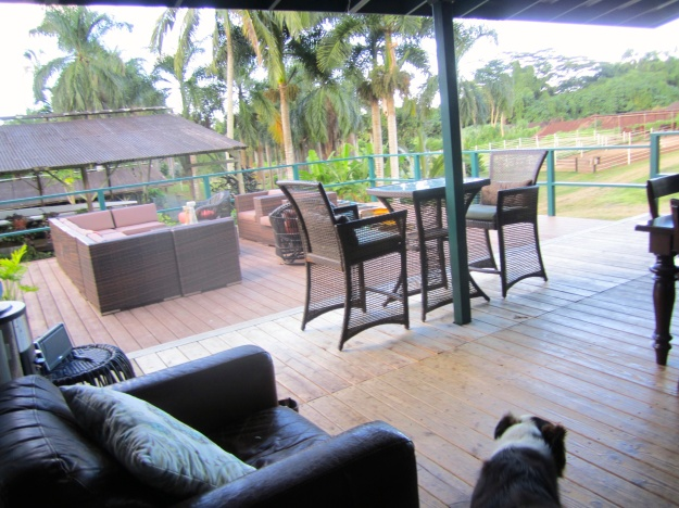 Another view of the deck.
